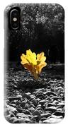 Autumn Oak Isolations IPhone Case