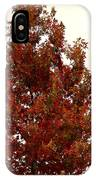 Autumn Oak On A Cloudy Day IPhone Case