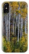 Autumn On Mcclure Pass IPhone Case