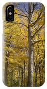 Autumn Orange Forest Colors At Hager Park No.1189 IPhone Case