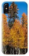 Autumn Palette   IPhone Case