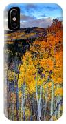 Autumn Pass IPhone Case