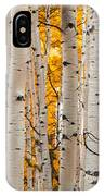 Autumn Quaking Aspen Panoramic IPhone Case