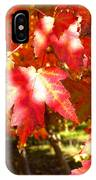 Autumn Shadows IPhone Case