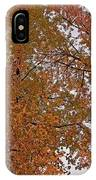 Autumn Sky Through Trees IPhone Case