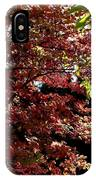 Autumn Snowball Bush IPhone Case