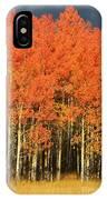 Autumn Splender  IPhone Case