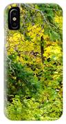 Autumn Splendor 14  IPhone Case