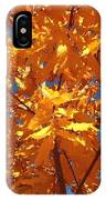 Autumn Splendor 15 IPhone Case