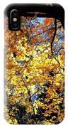 Autumn Splendor 3 IPhone Case