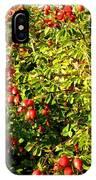 Autumn Splendor 5 IPhone Case