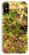 Autumn Splendor 7 IPhone Case