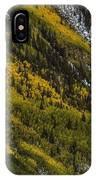 Autumn Streaks IPhone Case