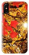 Autumn Sunrise Painterly IPhone Case