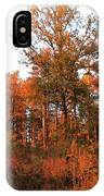 Lighted By Sunset 1 IPhone Case