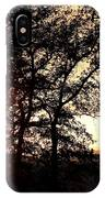 Autumn Sunset IPhone Case
