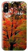 Autumn Umbrella Of Color IPhone Case