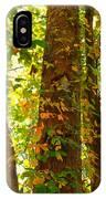 Autumn Vines IPhone X Case