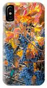 Autumn Vineyard Sunlight IPhone Case