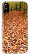 Autumn Walk In Ohio IPhone Case