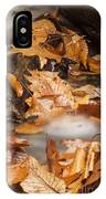 Autumn Water Eddy IPhone Case