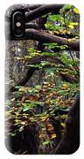 Autumn Wild Nature Denmark IPhone Case