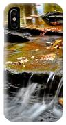 Autumnal Serenity IPhone Case
