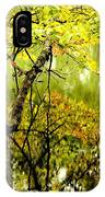 Autumn's First Reflections II IPhone Case