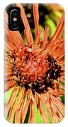 Autumn's Gerber Daisy IPhone Case