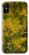 Autumn's Gold 2013 IPhone Case