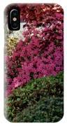 Azaleas And Red Maple Tree IPhone Case