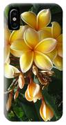 Aztec Gold Plumeria IPhone Case