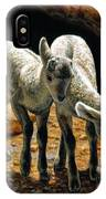 Baby Bighorns IPhone X Case