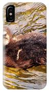 Baby Canadian Goose IPhone Case