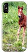 Baby Colt IPhone Case