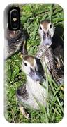 Baby Ducks IPhone X Case