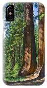 Bachelor And Three Graces In Mariposa Grove In Yosemite National Park-california IPhone Case