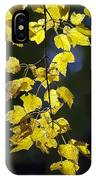 Backlit Leaves Of Autumn IPhone Case