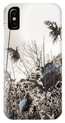 Backlit Winter Reeds IPhone Case