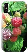 Fruit- Black Raspberries - Luther Fine Art IPhone Case