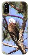 Bald Eagle Grooming IPhone Case