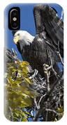 Bald Eagle On Nest Near The Oxbow IPhone Case