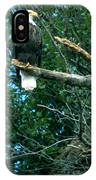 Bald Eagle Poses IPhone Case