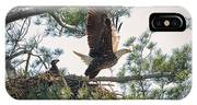 Bald Eagle With Eaglet IPhone Case