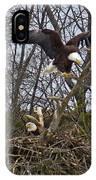 Bald Eagles At Nest IPhone Case