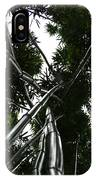 Bamboo Skies 2 IPhone Case