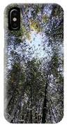 Bamboo Sky IPhone Case