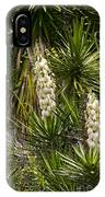 Banana Yucca   #0533 IPhone Case