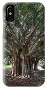 Banyan Tree Reaching For The Sky IPhone Case