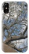 baobab from Madagascar 9 IPhone Case